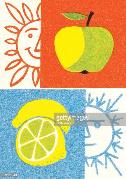 ilustrações, clipart, desenhos animados e ícones de winter summer apple lemon - limão amarelo