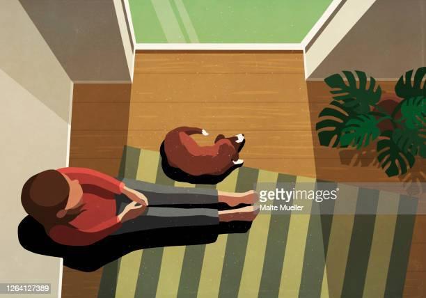 illustrations, cliparts, dessins animés et icônes de woman and dog sitting in sunny window - confinement clip art