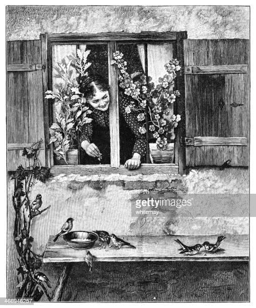 女性の鳥の餌付け、ウィンドウ
