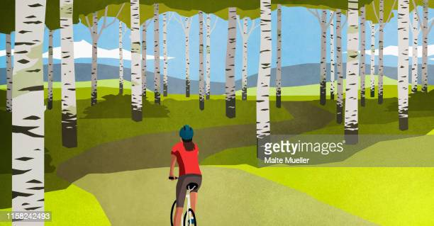 woman mountain biking on path through trees in idyllic forest - journey stock illustrations