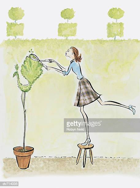 woman pruning topiary tree - hedge clippers stock illustrations, clip art, cartoons, & icons