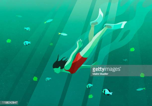 woman swimming underwater in ocean surrounded by fish - carefree stock illustrations