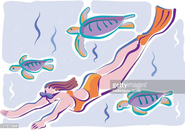 ilustraciones, imágenes clip art, dibujos animados e iconos de stock de a woman swimming underwater with sea turtles - diving flipper