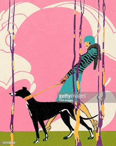 ilustraciones, imágenes clip art, dibujos animados e iconos de stock de mujer caminar greyhound perro - galgo