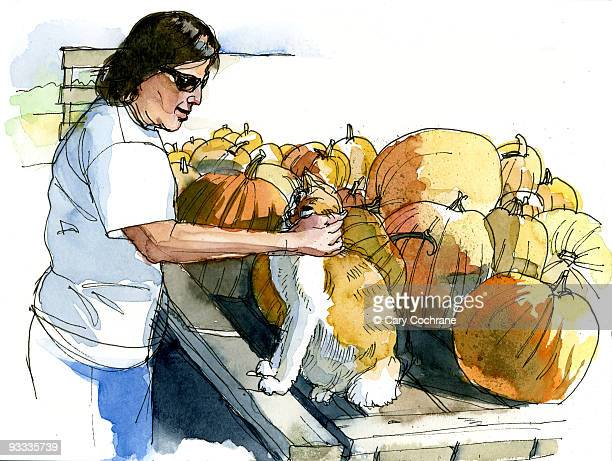 woman with cat and pumpkins - sunglasses stock illustrations