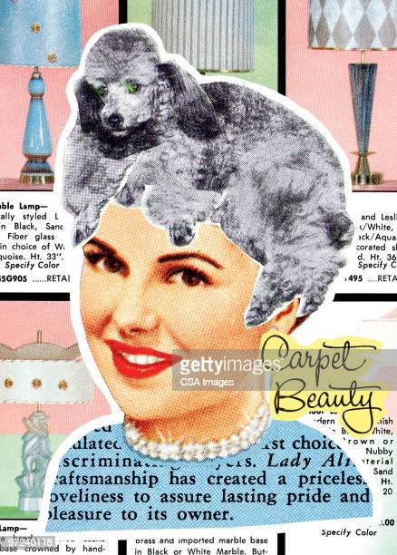 woman with poodle wig - 20th century stock illustrations