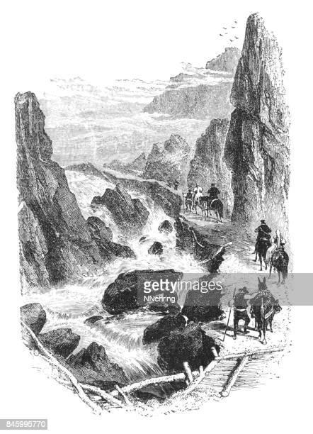 ilustraciones, imágenes clip art, dibujos animados e iconos de stock de grabar en madera del camino de la mula en las montañas - mula