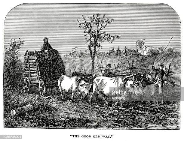 woodcut of oxen pulling wagon of logs