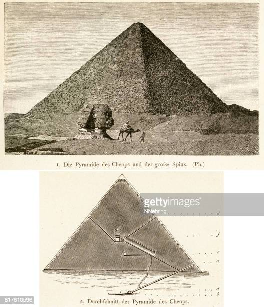 woodcuts of great pyramid of giza - the sphinx stock illustrations, clip art, cartoons, & icons