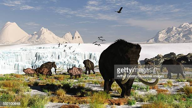 Woolly mammoths and woolly rhinos in a prehistoric landscape.