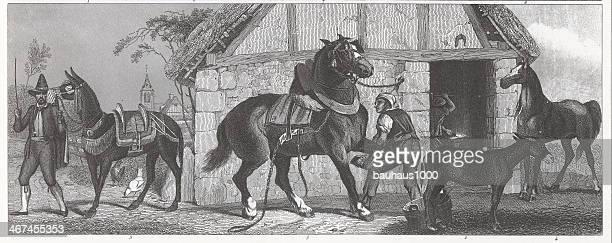 ilustraciones, imágenes clip art, dibujos animados e iconos de stock de caballos de grabado - mula
