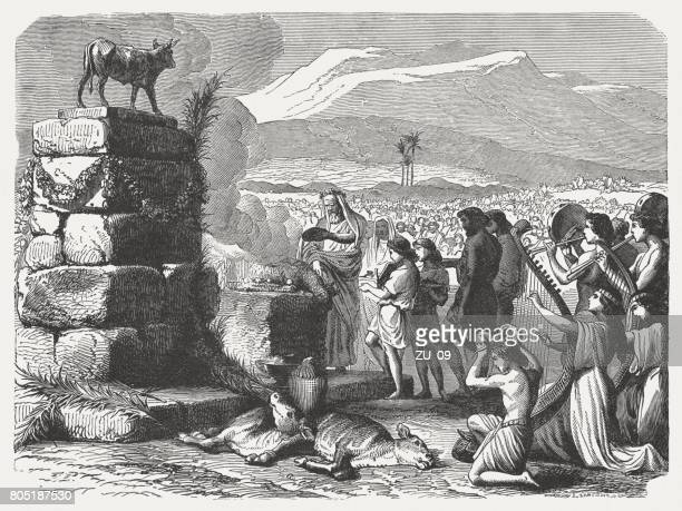 worship of the golden calf (exodus 32), published in 1886 - calf stock illustrations, clip art, cartoons, & icons