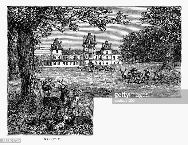 wynnstay house and park, wrexham, wales victorian engraving, circa 1840 - 1840 1849 stock illustrations