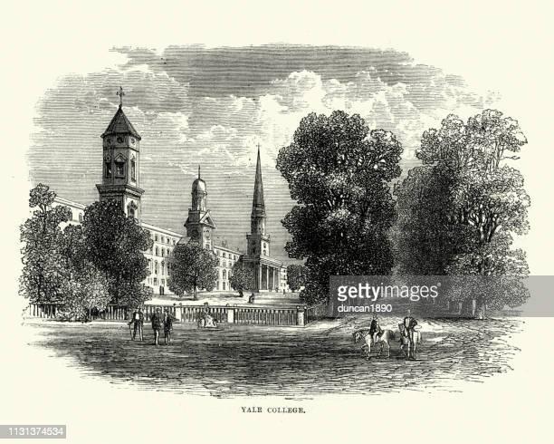 yale college , yale university 19th century - yale university stock illustrations