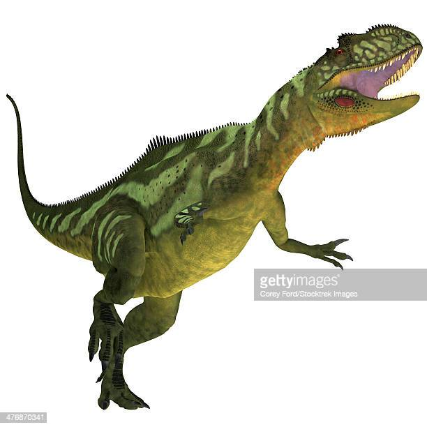 Yangchuanosaurus was a theropod dinosaur that lived in China during the Late Jurassic Period.