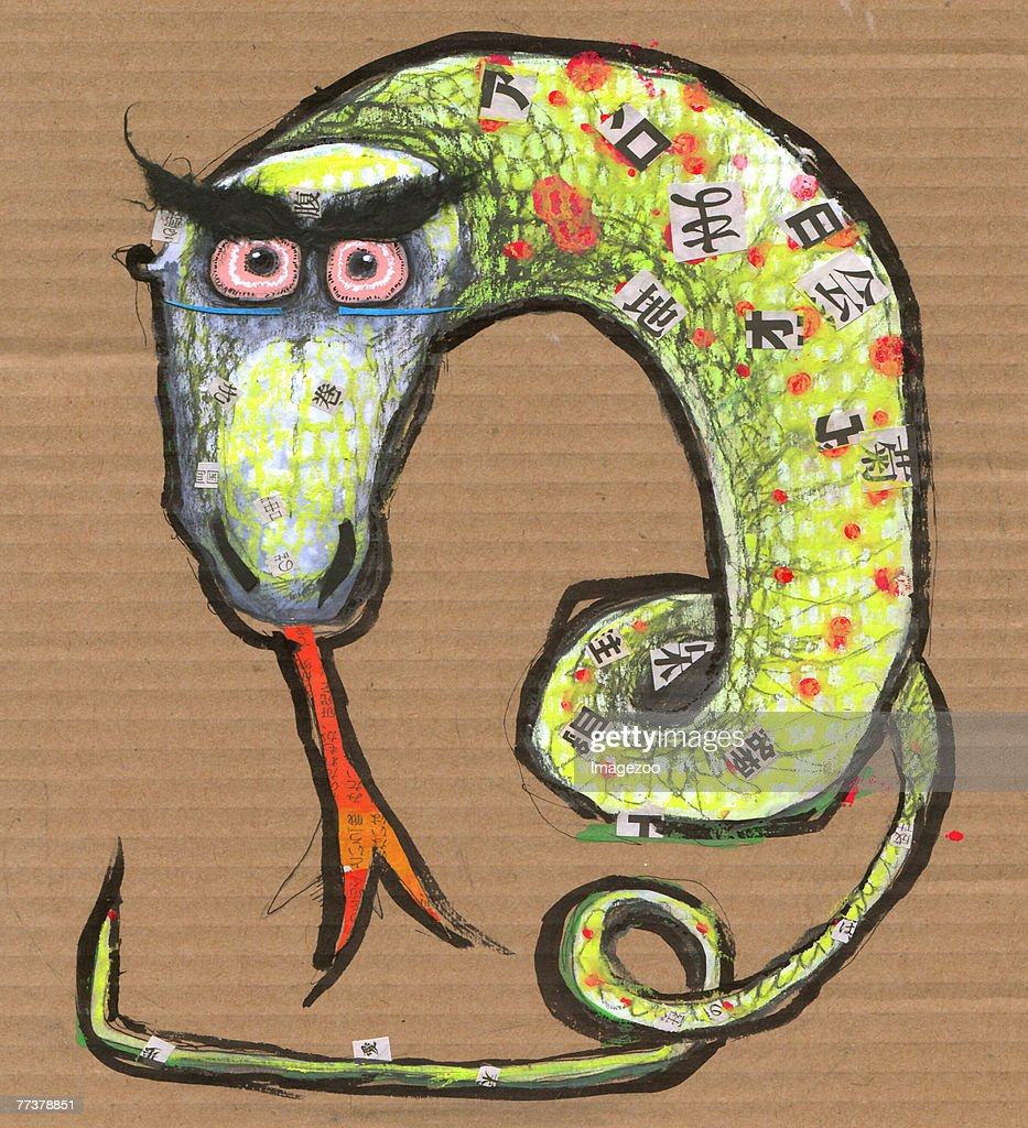 year of the snake : Illustration