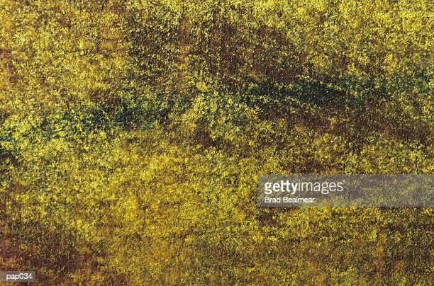 yellow-green background - farbpulver stock-grafiken, -clipart, -cartoons und -symbole