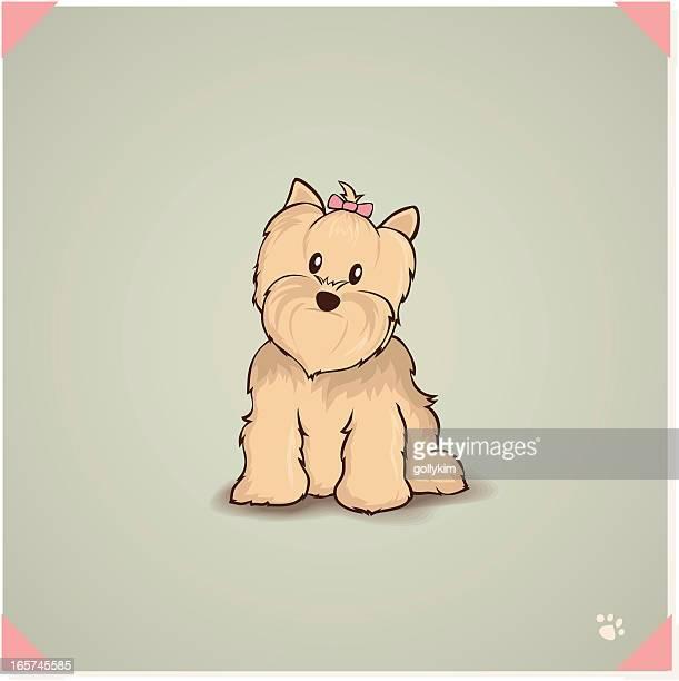 ヨークシャーテリア - 愛玩犬点のイラスト素材/クリップアート素材/マンガ素材/アイコン素材