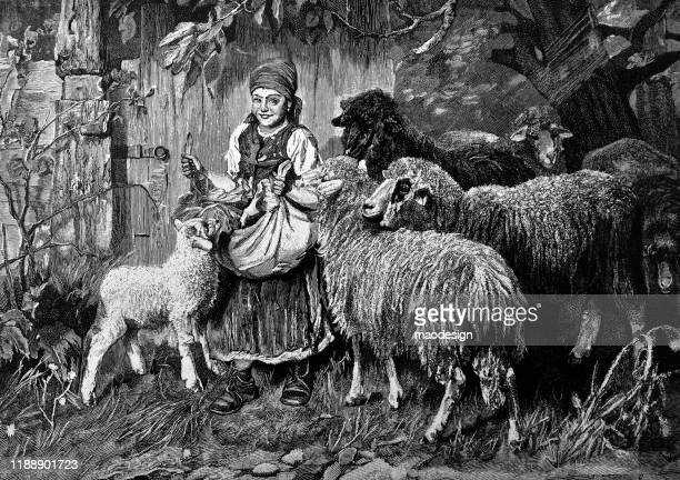 ilustrações, clipart, desenhos animados e ícones de a rapariga alimenta carneiros em uma exploração agrícola - 1887