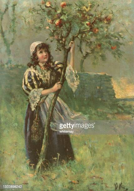 young girl shaking an apple tree to gather its fruit - one teenage girl only stock illustrations
