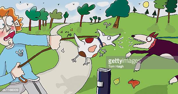 Young Man Pulling His Dog Away From Another Barking Dog in the Park