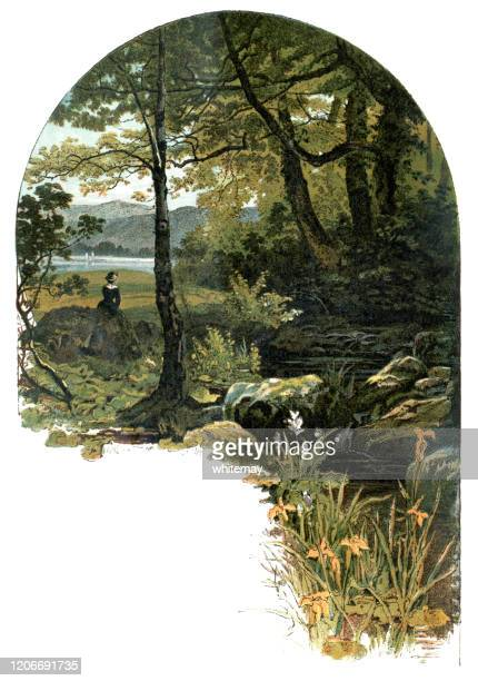 young victorian woman sitting by a woodland stream - english culture stock illustrations