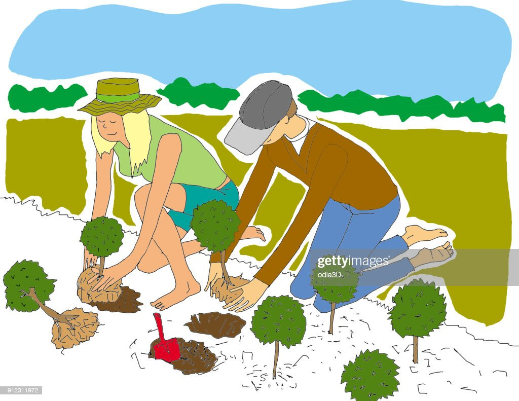 young woman and man working together : Stock Illustration