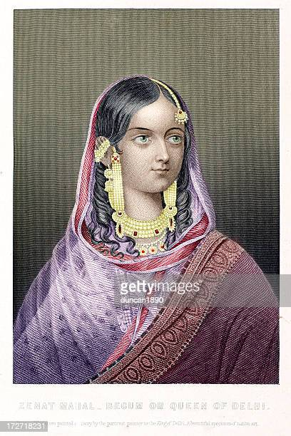 ilustraciones, imágenes clip art, dibujos animados e iconos de stock de zenat mahal - etnia del subcontinente indio