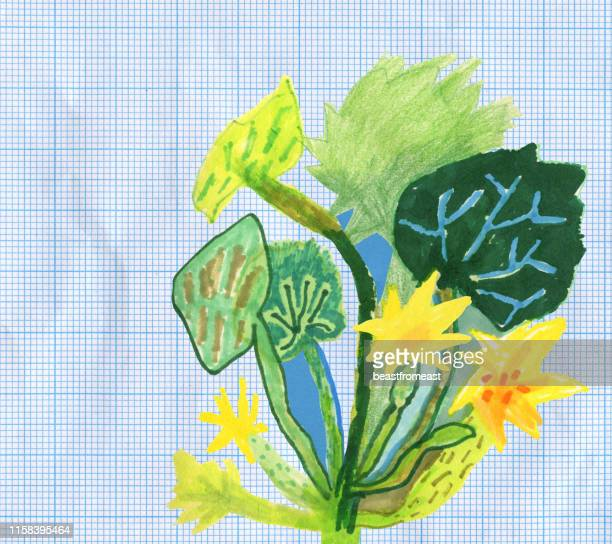 zucchini - marrom stock illustrations
