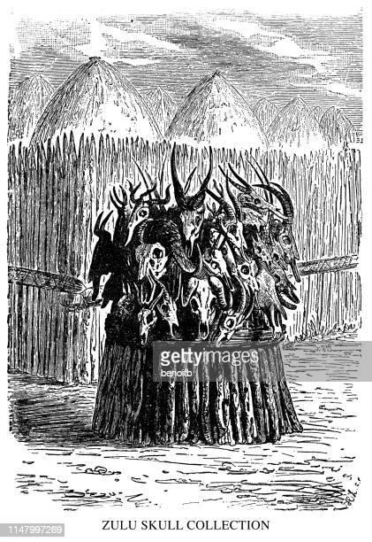 zulu skull collection - african buffalo stock illustrations, clip art, cartoons, & icons