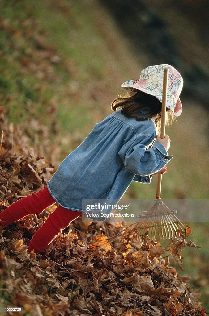 YOUNG GIRL IN HAT RAKING AUTUMN LEAVES : Stock Photo