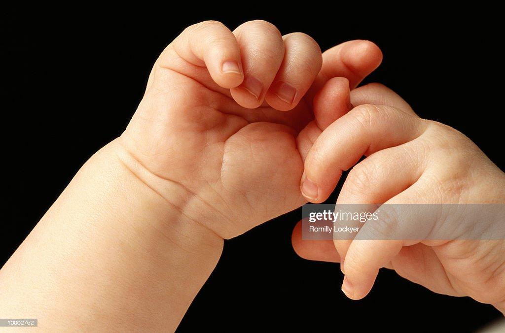 BABY'S INTERLOCKED HANDS IN DETAIL : Stock Photo