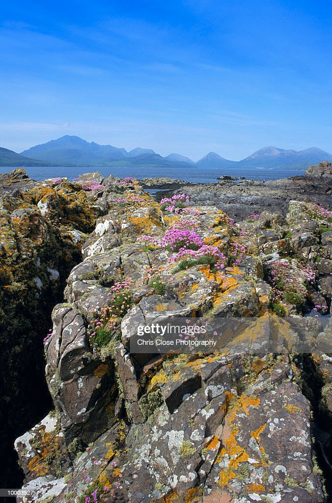 THE CUILLINS IN ISLAND OF SKYE, SCOTLAND : Stock Photo