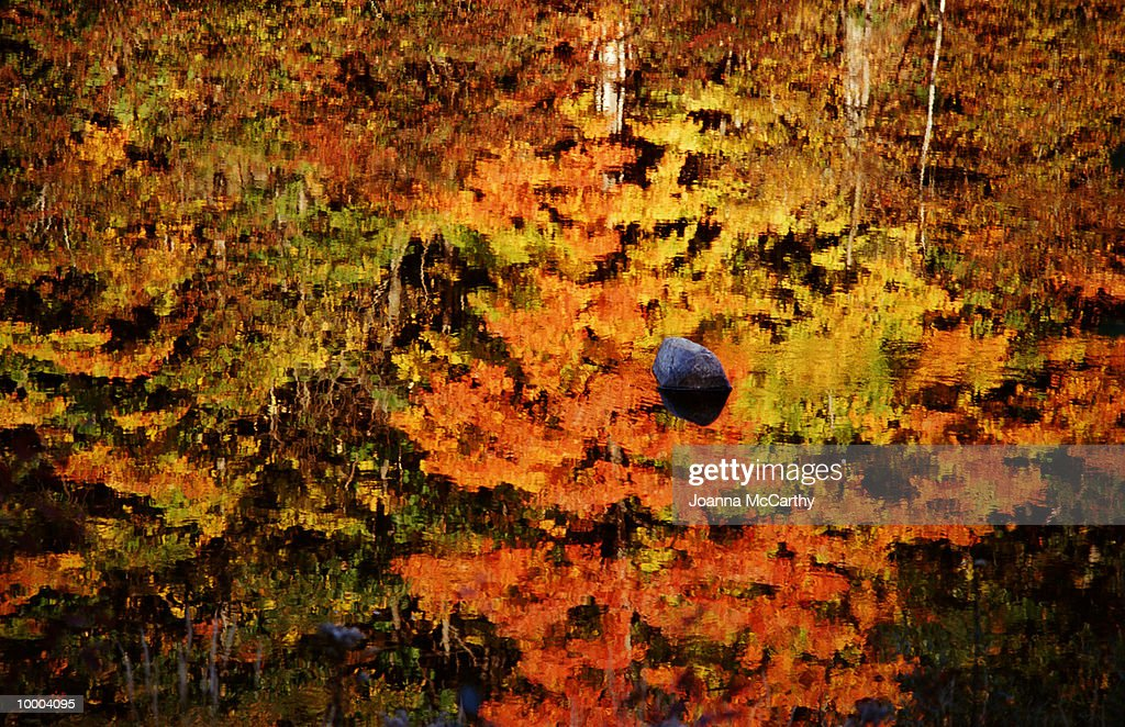 ROCK IN WATER REFLECTING FALL TREES : Stock Photo