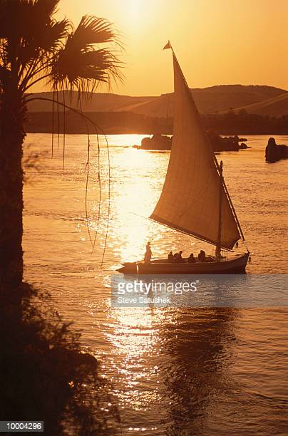 feluccas at sunset on the nile river in aswan, egypt - ナイル川 ストックフォトと画像