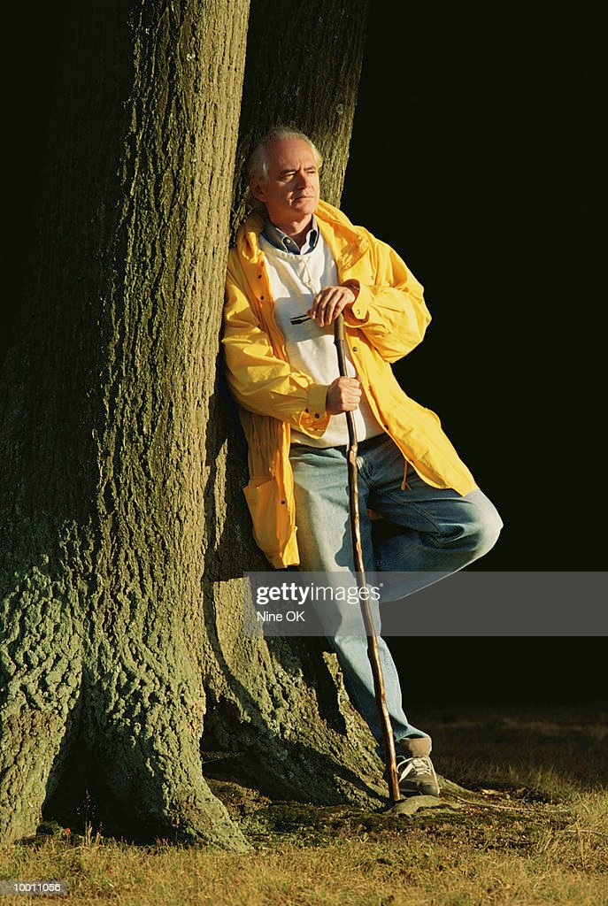 MATURE MAN WITH WALKING STICK LEANING ON TREE : Stock Photo