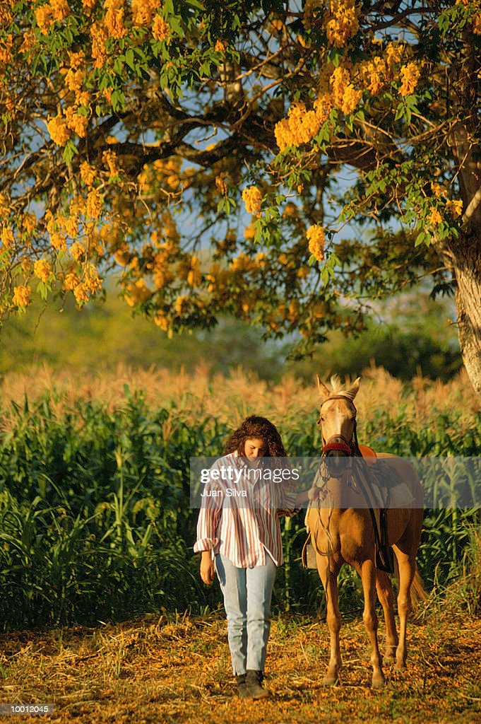 YOUNG WOMAN WALKING HORSE BY CORN FIELD : Stock Photo