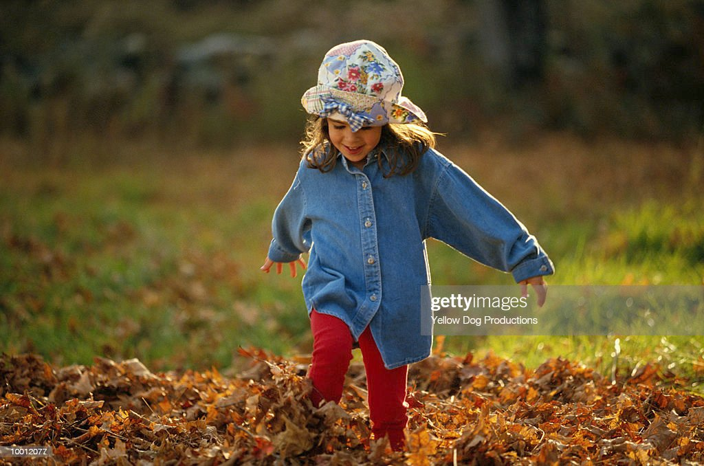 YOUNG GIRL PLAYING IN FALL LEAVES : Stock Photo
