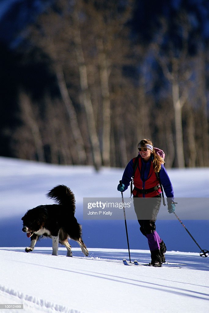 WOMAN CROSS COUNTRY SKIING WITH DOG : Stock Photo