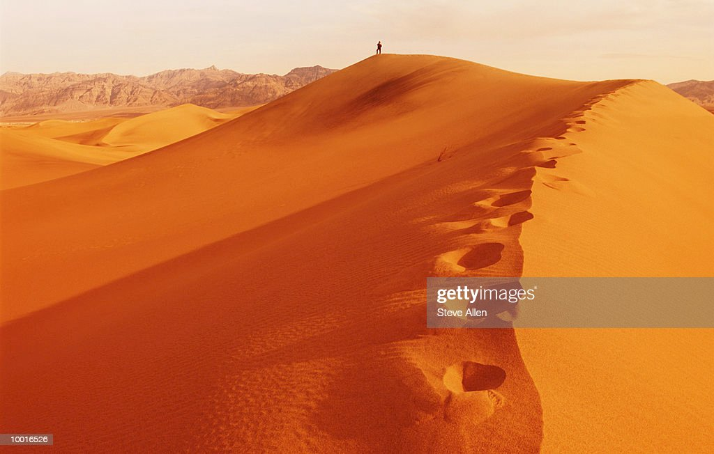 SAND DUNES IN DEATH VALLEY, CALIFORNIA : Stock Photo