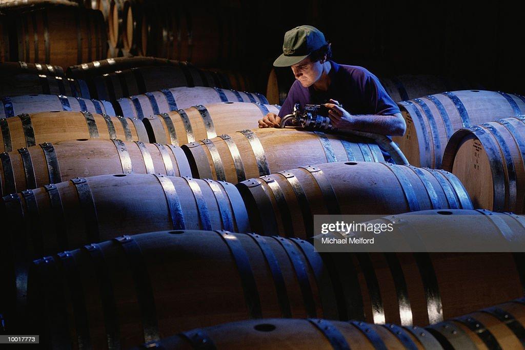 AGING WINE IN BARRELS IN NAPA VALLEY, CALIFORNIA : Stockfoto