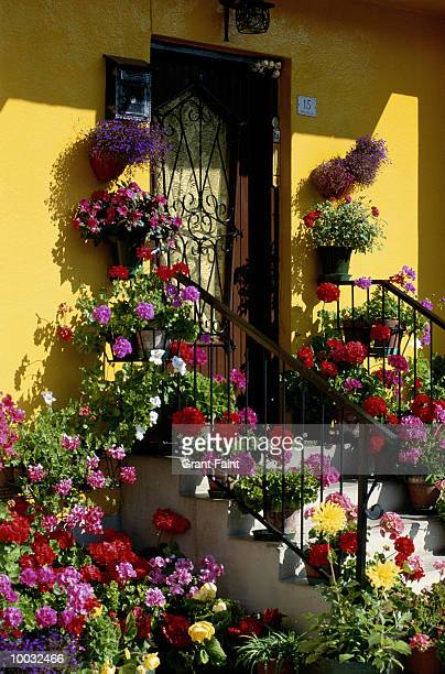 flowers and doorstep in italy in dolomites - composizione verticale foto e immagini stock
