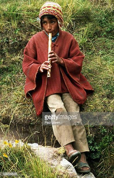 ANDIAN MOUNT AND QUECHUA BOY WITH FLUTE IN PERU