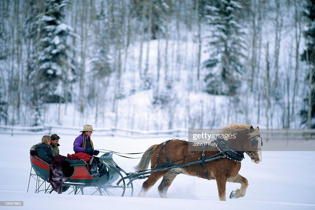 COUPLE IN HORSE DRAWN SLEIGH IN ASPEN,COLORADO : Stock Photo