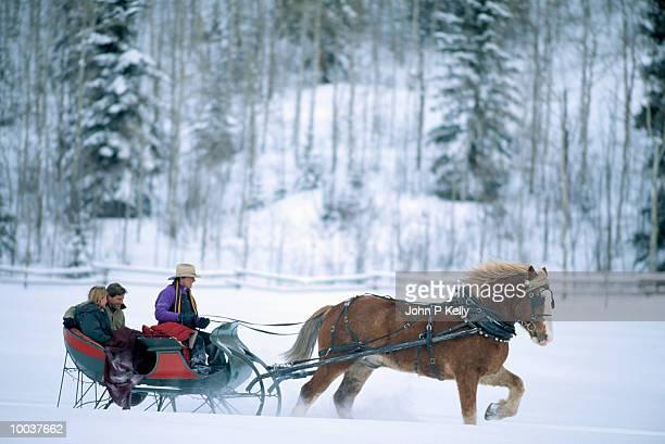 couple in horse drawn sleigh in aspen,colorado - pferdeantrieb stock-fotos und bilder