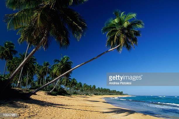 PINONES BEACH IN PUERTO RICO IN SAN JUAN
