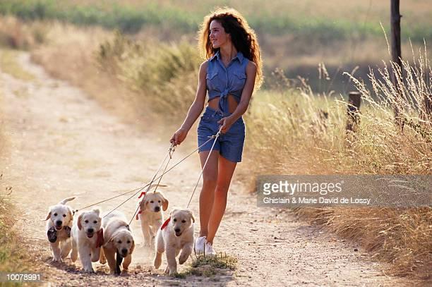 girl walking puppies - grupo mediano de animales fotografías e imágenes de stock