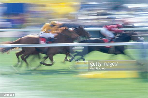 HORSE RACING IN ENGLAND