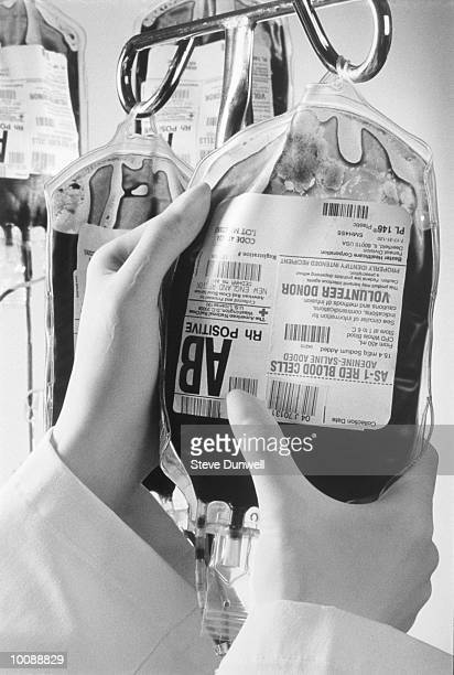 human blood for transfusion in boston - human blood stock pictures, royalty-free photos & images