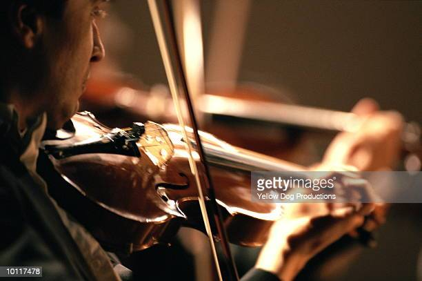 orchestra violinist - orchestra stock pictures, royalty-free photos & images